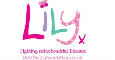 Lily Foundation